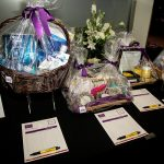 164124-3952 ZCIWD - Silent Auction display - HEalth-SPA