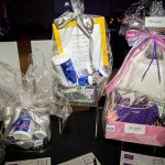 164225-3977 ZCIWD - Silent Auction display - Wellness